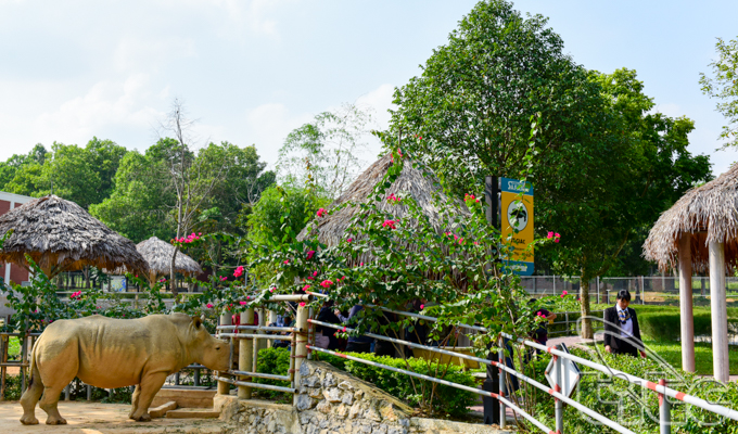 Muong Thanh Safari Land – The largest open zoo in the North Central